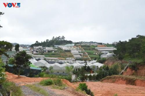 Zoom sur Dà Lat, capitale agricole du Vietnam - ảnh 9