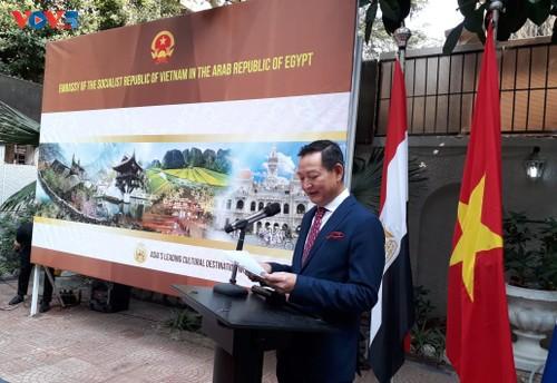 Phát triển quan hệ Việt Nam - Ai Cập qua các hoạt động văn hóa - ảnh 1