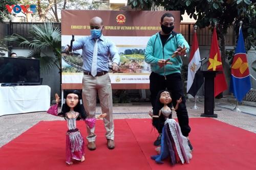 Phát triển quan hệ Việt Nam - Ai Cập qua các hoạt động văn hóa - ảnh 3