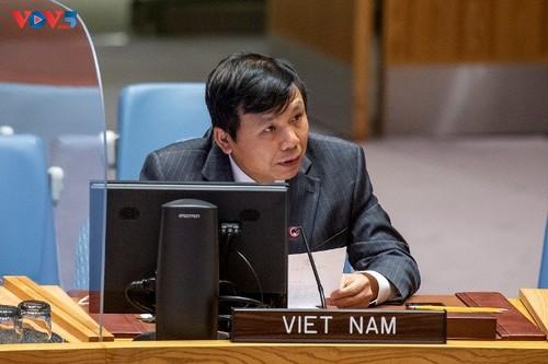 Việt Nam kêu gọi cách tiếp cận toàn diện trong giải quyết các thách thức tại Mali - ảnh 1