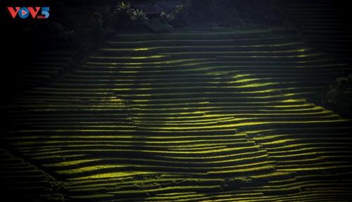 Tam Đường rực rỡ mùa vàng - ảnh 14