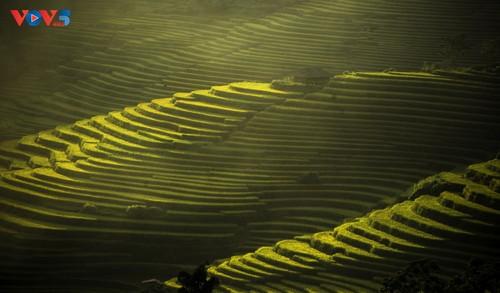 Tam Đường rực rỡ mùa vàng - ảnh 17