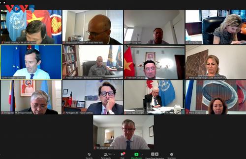 Việt Nam chủ trì cuộc họp Nhóm bạn bè của Công ước Liên Hợp Quốc về Luật Biển - ảnh 1