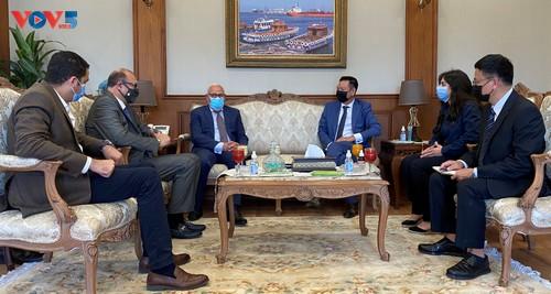Promouvoir la coopération entre le Vietnam et les villes égyptiennes - ảnh 1