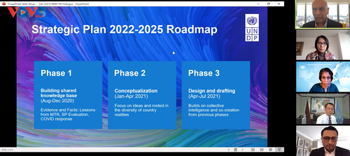 UNDP công bố các ưu tiên phát triển giai đoạn 2021-2025 cho khu vực châu Á-Thái Bình Dương - ảnh 1