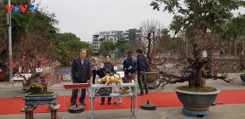 Tết của người Việt ở nước ngoài - ảnh 2