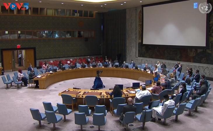 联合国安理会就戈兰高地形势和马里问题召开会议 - ảnh 1