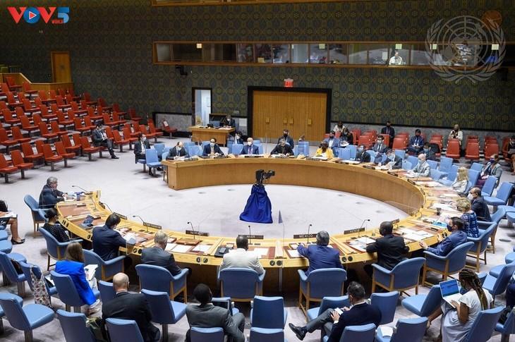 越南强调尊重和全面执行《禁止化学武器公约》的必要性 - ảnh 1