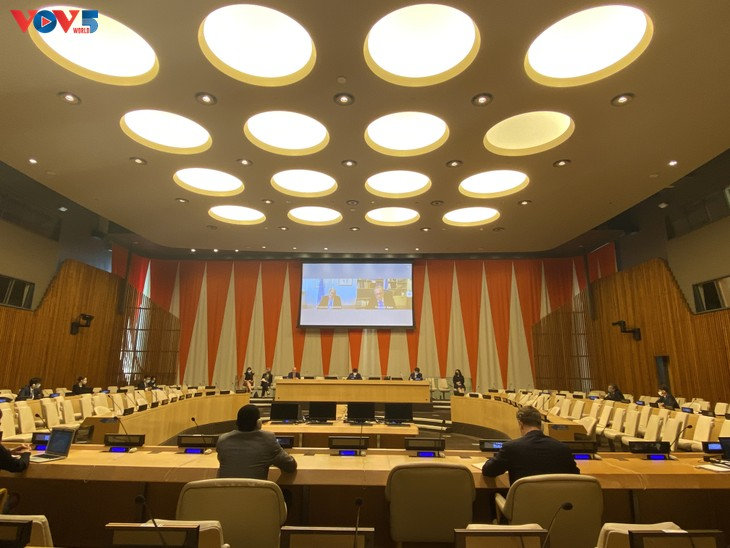 ベトナム 国際法廷に関する安保理の非公式作業部会の対話促進を公約 - ảnh 1