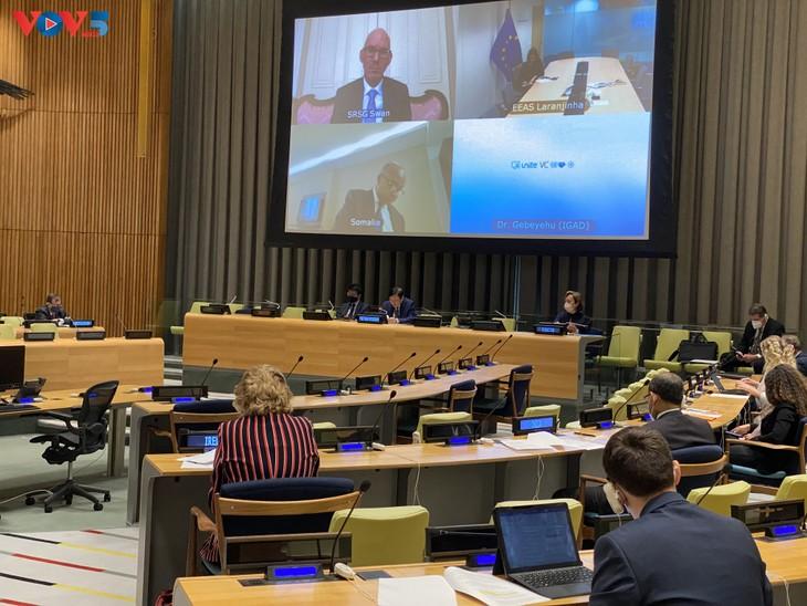 Вьетнам призывает стороны воздерживаться от любых действий, осложняющих ситуацию в Сомали - ảnh 1