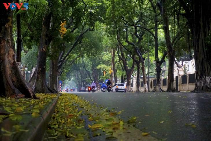Quang cảnh Hà Nội đẹp thanh vắng trong những ngày tháng cách ly xã hội  - ảnh 2