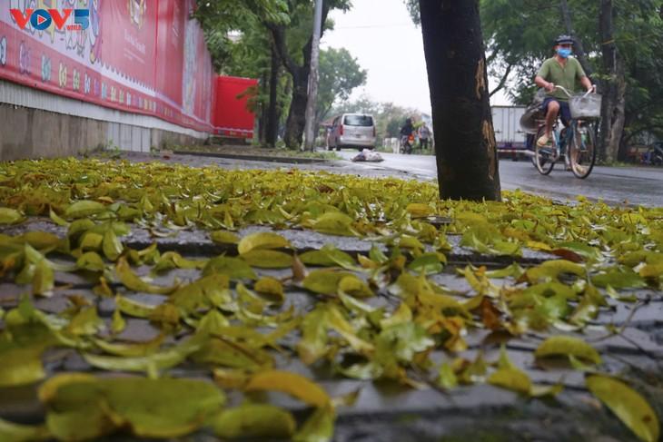 Quang cảnh Hà Nội đẹp thanh vắng trong những ngày tháng cách ly xã hội  - ảnh 3