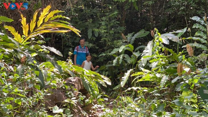 Trải nghiệm leo núi xuyên rừng Cát Bà - ảnh 14