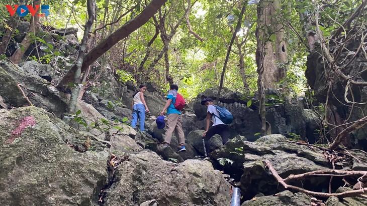 Trải nghiệm leo núi xuyên rừng Cát Bà - ảnh 7