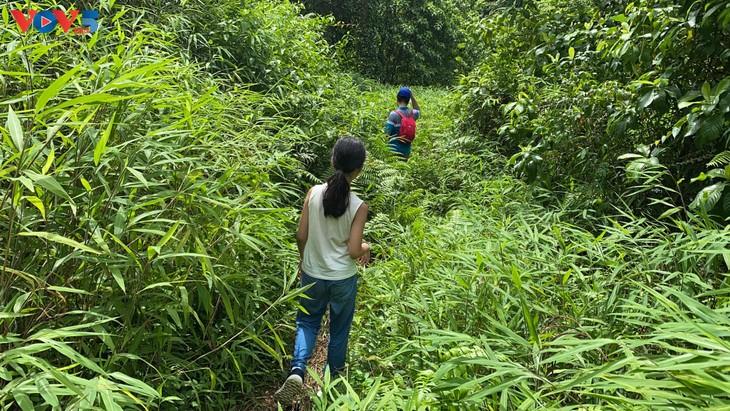 Trải nghiệm leo núi xuyên rừng Cát Bà - ảnh 5