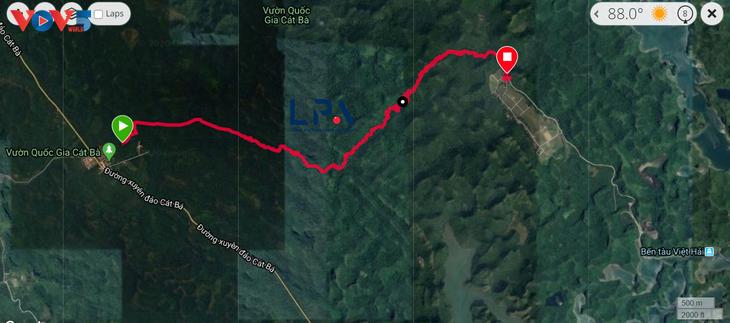 Trải nghiệm leo núi xuyên rừng Cát Bà - ảnh 2