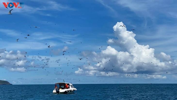 Hòn Trứng - sân chim giữa biển tại Việt Nam - ảnh 2