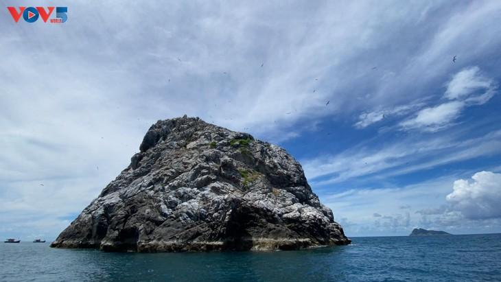 Hòn Trứng - sân chim giữa biển tại Việt Nam - ảnh 1