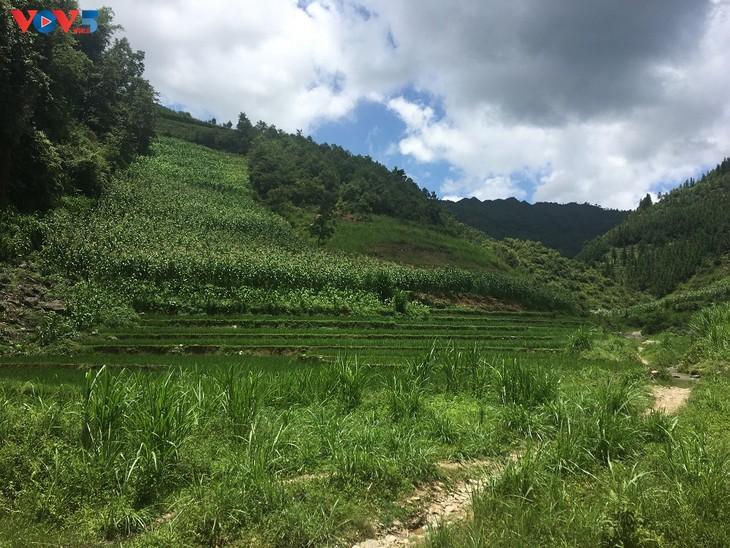 Đến thôn Má Lủng của người Mông ở xã Ma Lé - ảnh 17