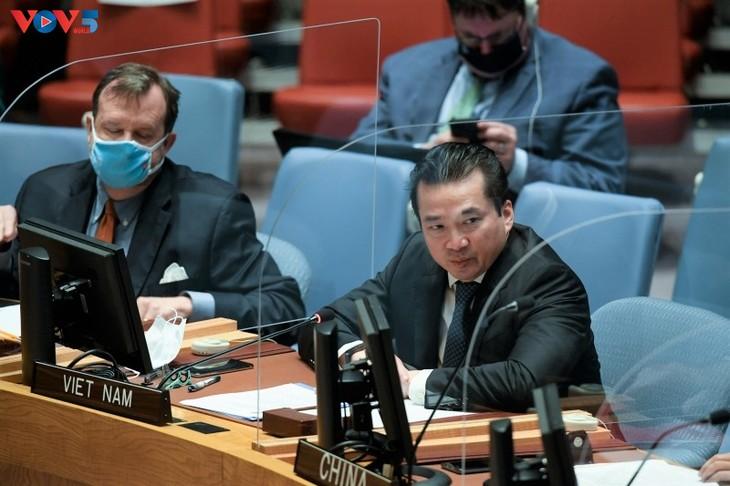 Вьетнам подчеркнул важность миссии ООН в поддержании безопасности на спорной территории Абьей - ảnh 1