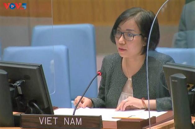 Việt Nam hoan nghênh việc bổ nhiệm các đặc phái viên của LHQ về Tây Sahara - ảnh 1