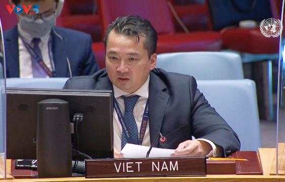 Vietnam llama a impulsar la reconciliación para poner fin a la violencia en la República Democrática del Congo - ảnh 1