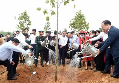 Continúan las actividades para cumplir el objetivo de sembrar mil millones de árboles en Vietnam - ảnh 1