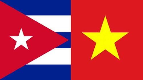 Vietnam se solidariza con Cuba en la superación de las dificultades - ảnh 1