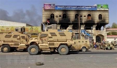 ONU aprueba resolución de supervisión de alto al fuego en Yemen - ảnh 1