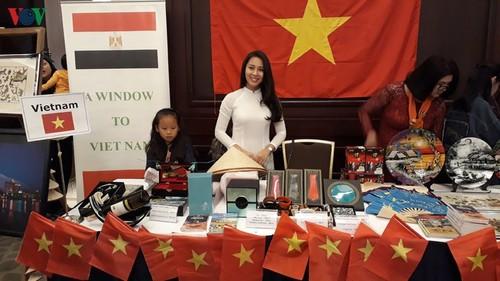 Promueven imagen de Vietnam en feria de caridad en Egipto - ảnh 1