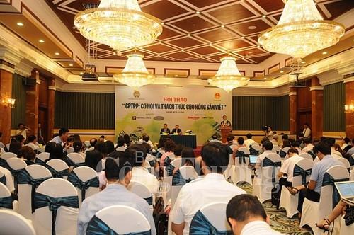 CPTPP : comment l'agriculture vietnamienne en tire-t-elle profit ? - ảnh 1