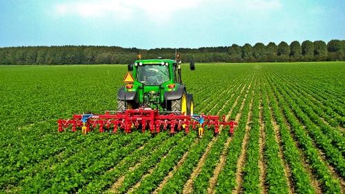 Belles perspectives pour l'agriculture vietnamienne en 2020 - ảnh 1