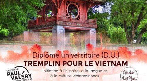 Tremplin pour le Vietnam - ảnh 1