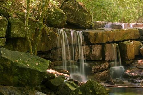 Travel website reveals top 10 best Vietnamese national parks - ảnh 2