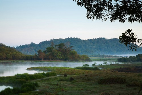 Travel website reveals top 10 best Vietnamese national parks - ảnh 4