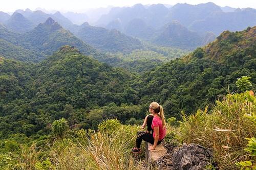 Travel website reveals top 10 best Vietnamese national parks - ảnh 5