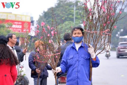 Hanoi à l'approche du Têt - ảnh 2