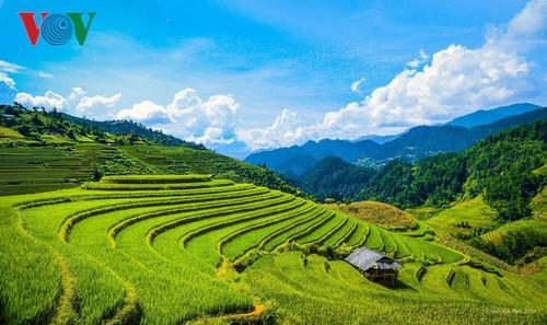 Dix destinations pour les vacances d'été au Vietnam - ảnh 2