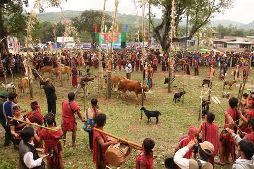 Arieu Ping, the reburial festival of the Pa Ko  - ảnh 1