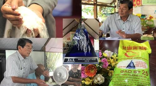 Wissenschaftler Ho Quang Cua - Der Vater der Reissorte ST25 - ảnh 1