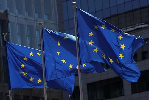 Pour Charles Michel et l'UE, un sommet de crise pour relancer l'économie européenne - ảnh 1