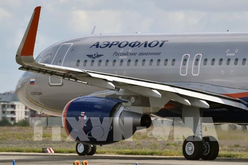 Russia resumes flights with Armenia, Azerbaijan  - ảnh 1