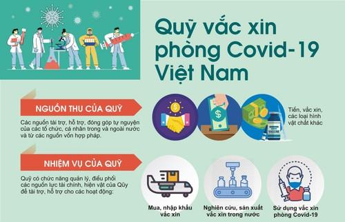 Perkenalan Sepintas tentang Mangga Vietnam dan Dana Vaksin Covid-19 di Vietnam - ảnh 2