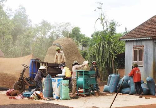Perubahan di Kecamatan Ha Bau - ảnh 2