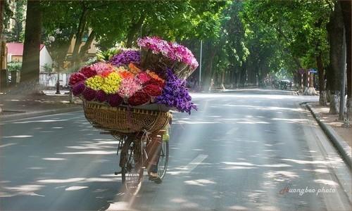 Ikhtisar Surat Para Pendengar dan Perkenalan Sepintas tentang Pemandangan Musim Gugur di Hanoi - ảnh 2