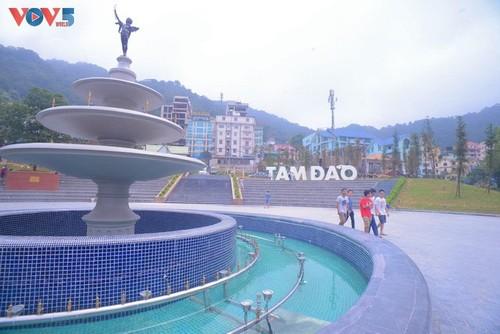 2021年初吸引游客的越南旅游胜地 - ảnh 2