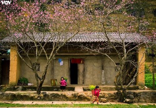 2021年初吸引游客的越南旅游胜地 - ảnh 5
