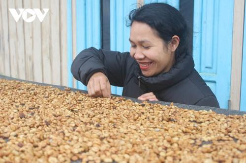 戈豪族女孩靠阿拉比卡咖啡成功创业 - ảnh 1