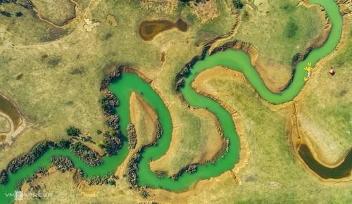 同林草原——理想的野游目的地 - ảnh 2