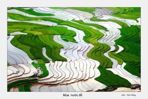 西北灌水季节之美 - ảnh 2